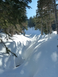 Redpine Lake drainage - photo: Zach Schwing